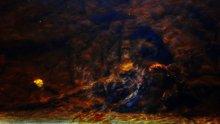 история, рассказанная рекой / дно реки Карповки