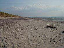 Пустой пляж. / Куршская коса.