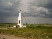 Памятник у дороги. / Гродненская область.
