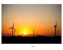 Cairo / Ветряные генераторы в Египте