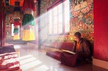 Тишина и медитация. Буддистский монастырь в Намчи, штат Сикким / Фотография из поездки по маленькому индийскому штату Сикким в Гималаях. Дым благовоний сделал видимыми яркие лучи света. В храме кроме меня и этого молодого монаха не было никого. Несмотря на то, что я довольно долго фотографировал и храм и этот прекрасный сюжет, монах ни разу не взглянул на меня, настолько глубоко был погружен в чтение книги ...Тишина и медитация..