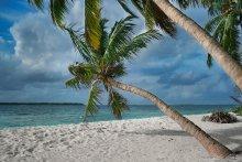 Про белый песок / Остров Meedhu, расположенный внутри кораллового атолла. Почти кусочек Рая. Двери в домах не закрывают, а во многих домах дверей просто нет. Над головой растут кокосы, папайя и бананы.