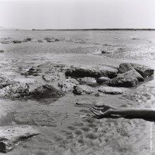 Atlantic ocean. Ebb. France. Summer 2012. / ..........................