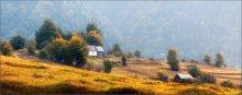 / Одним осенним утром ... / / Межгорье, Закарпатская область, прошлая неделя. Nikon D90 + Nikkor 70-210/f4 + C-PL, f8, 165 mm -- Приглашаю 1-2 человек в Карпаты.  Ближайшие выезды - 6 октября и 12 октября.  Можно будет пообщаться, задать все интересующие вас вопросы и вцелом просто хорошо провести время. - [url=url][b]http://fototour.by[/b][/url] -  Второй, чуть иной вариант работы: [img]http://i4.imageban.ru/out/2012/09/28/96aaa3258265ae89ecd11101b6dd45fa.jpg[/img]