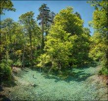 Croatia. Plitvice Lakes #01 / прозрачная, голубая как в бассейне, вода Плитвицких озер покрывает большие участки леса, а ходят по парку через всё это великолепие в основном по бревенчатым мостикам-дорожкам...