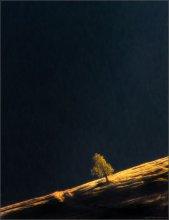 / ONE / / Nikon D90 + Nikkor 70-210/f4 + C-PL B+W, 1 кадр.   --  Закарпатье. Кривопольский перевал.  -- 5 дней в Карпатах по цене трех! Приглашаю 1 человека...  Выезд в ночь с 24-го на 25-ое октября из Минска или по маршруту следования. -- http://fototour.by/информация/