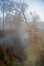 Серия : Утренний туман / .........