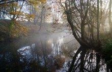 Серия :Утренний туман / ............