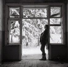 №4 / первый снег