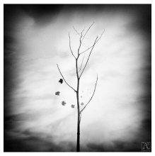 [ Goodbye Autumn ] / ...как бы так бы