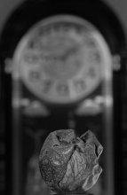 Время неумолимо / ***