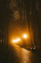 / Туман, 5 утра