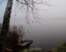 Ноябрь , туман / .............