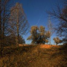 Осенние... / прогулочные