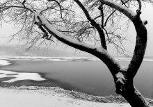 Зимный этюд / ______