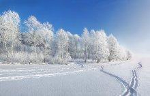 Сегодняшний морозный денёк) / !!!