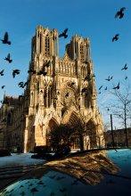 Notre-Dame de Reims / ------
