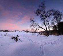 синий вечер 2 / последний день февраля. повезло с погодой