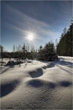 Весенняя зима / .... фрагмент.