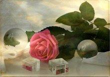 Этюд с розой... / Остались лишь воспоминания...