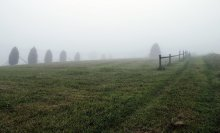 Мираж, иллюзия, туман... / Ранним утром в Карпатах...Туман...