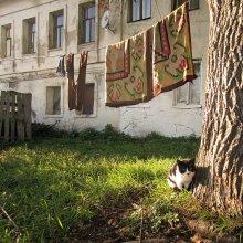 """""""А мой коврик давно не стирали..."""" / В ростовском дворике."""
