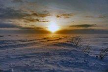 Зимняя дорога в тундре / 26 января. Ненецкий Автономный округ
