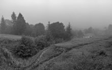 Карпатская деревушка. Туманный рассвет... / Предрассветное время,  влажный туман, звенящая тишина..   [img]http://i.photographers.com.ua/thumbnails/pictures/26188/800x_5-6-1w.jpg [/img]