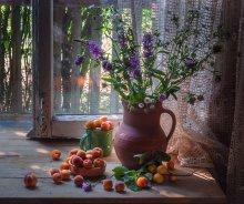 О диких абрикосах... / ...
