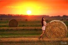 Закат над полем / вечерний фотосет...