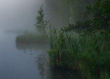 По утру... / утро, озеро, туман