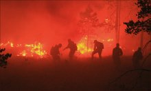 Работаем с огоньком! / Тушение лесного пожара в Лоухском районе Карелии.