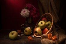 Дачные яблоки / Натюрморт с яблоками и астрами