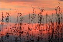 Осенний этюд. / Отражение заката в воде.