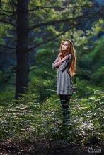 Дюймовочка / В тихом и темном лесу