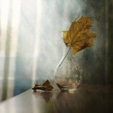 Кленовый лист... / .....................