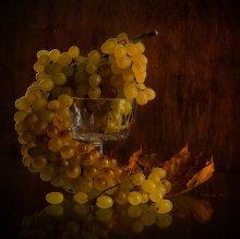 Осень. Виноград. / виноград,осенний лист.