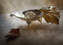 Опадают листья, опадают… / ......................