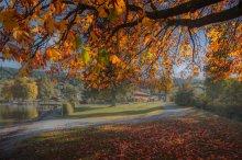Осень Девчонка Рыжая / Лучше смотреть на черном и слушать http://www.youtube.com/watch?v=afC7gL5FIUQ