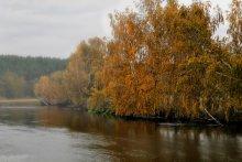Этюд октября / Белорусская природа