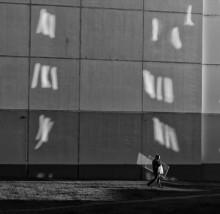 Windows / Borovliany, 2013