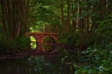 Дивный мост. / Когда обычное кажется сказочным.