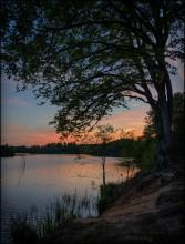 UK. Virginia Waters at Sunset / Закат в парке Valley Gardens на берегах озер Virginia Waters. Кстати, одно из немногих мест в частных владениях, откуда туристов к вечеру не выгоняют - вход свободный и днём и ночью... ну а место такое, что целого дня действительно мало :)