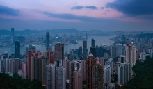 джунгли Гонконга / джунгли Гонконга