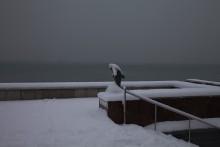 Спокойствие в пейзаже / снег,море,пасмурно