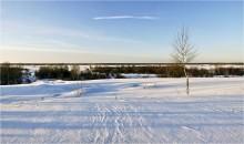 С Новым годом! / Вот в прошлую зиму был снег.... :)