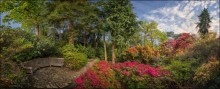 UK. Exbury Gardens #12 / Рукотворное чудо на южном побережье Англии - дело всей жизни дядюшки Ротшильда, считавшего банковское дело своим хобби, а садоводство - своей профессией...  Формат: HDR, вилка экспозиции - 5 кадров, 2 ряда по 8 позиций с перекрытием.  Немного информации на русском: http://sweet-live.ru/post102594229/ Официальный сайт: http://www.exbury.co.uk/website/