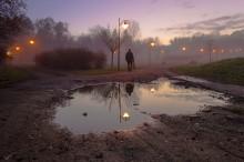 Отражение / Вечерний туман в Щецине