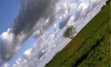 Этот горизонт завалил Я!... / Штормило малость...