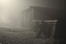 туманным вечером / д. Болотня